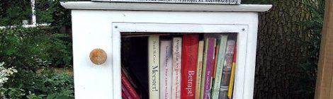 De informele bibliotheek (2)